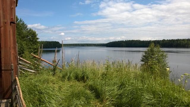 Oulujoen maisemia Lamminahon tilalta. Joki virtasi aikanaan 11 metriä nykyistä alempana vuolaana Niskakoskena. Kuva: KivaaTekemistä.fi