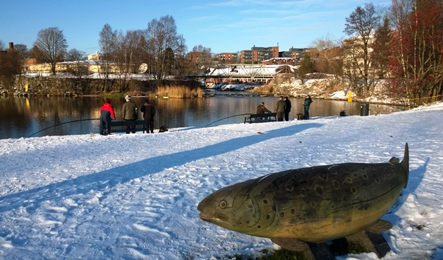 Vanhankaupunginkoski on suosittu siian tuulastuspaikka. Kuva: KivaaTekemistä.fi