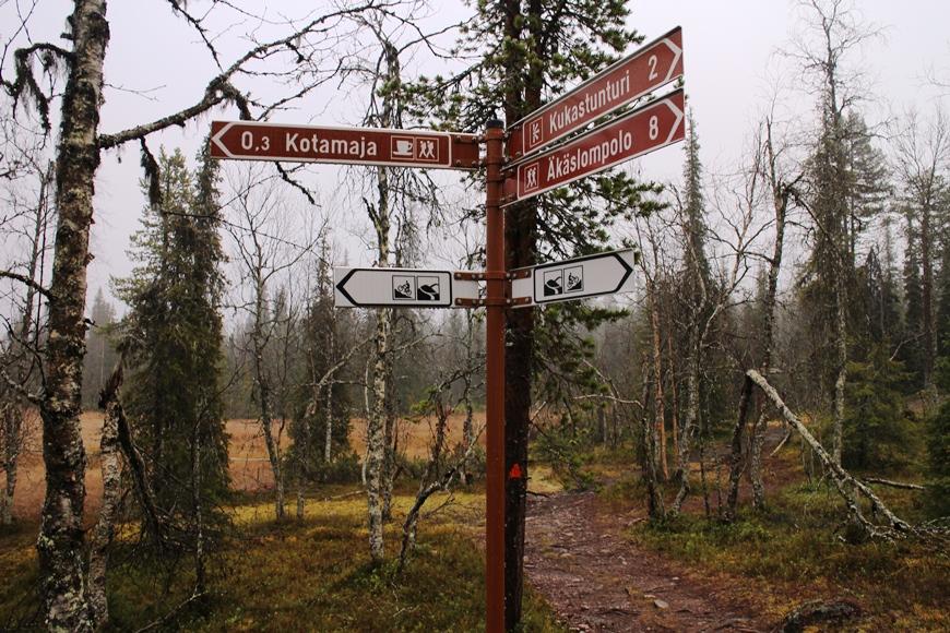 Kuva: KivaaTekemistä.fi