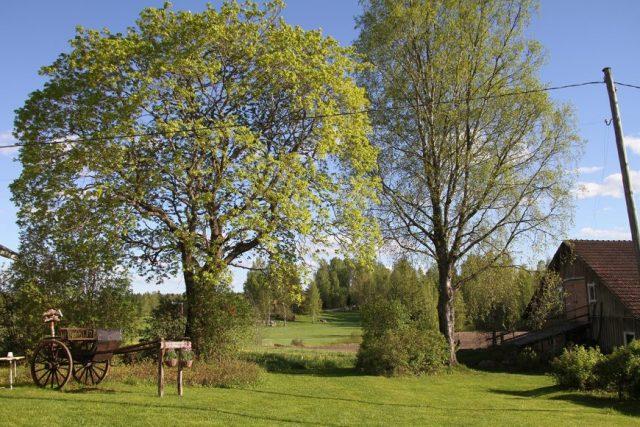 Perinnetilan pihapiiri, oikealla vanha navetta. Kuva: Kaivolan Perinnetila & Willa Fantti