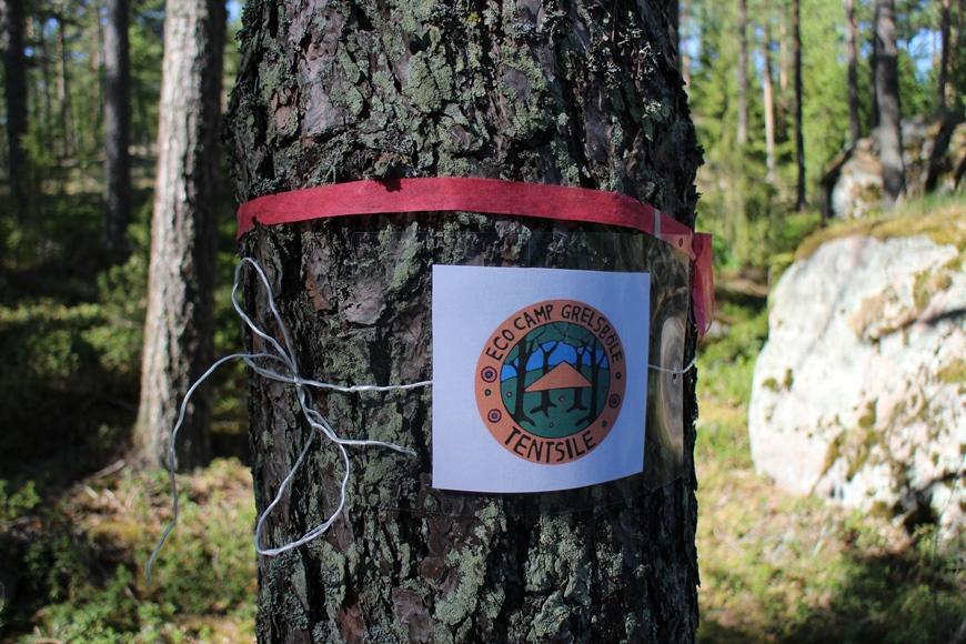 Reitti Grelsbölen tilalta teltoille on merkitty punaisin nauhoin ja Tentsile Eco Camp Grelsböle -logoin. Kuva: KivaaTekemistä.fi