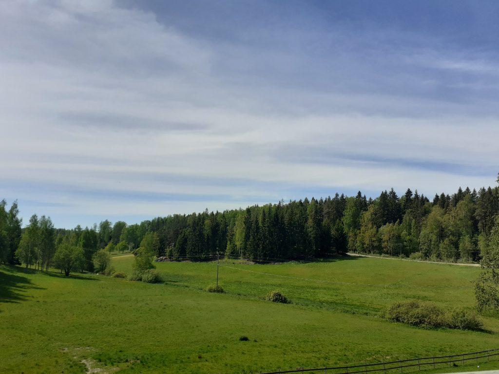 Näkymä Ravintola Tilan terassilta yli peltojen kohti Sipoonkorven metsiä.