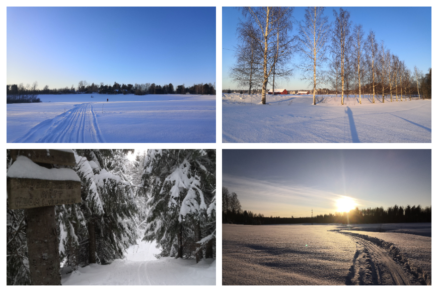 Nice pictures of southern Tuusula cross-country skiing tracks in January. Tracks are maintained by Myllykylän Mylly ry. Photos: LikeFinland.com