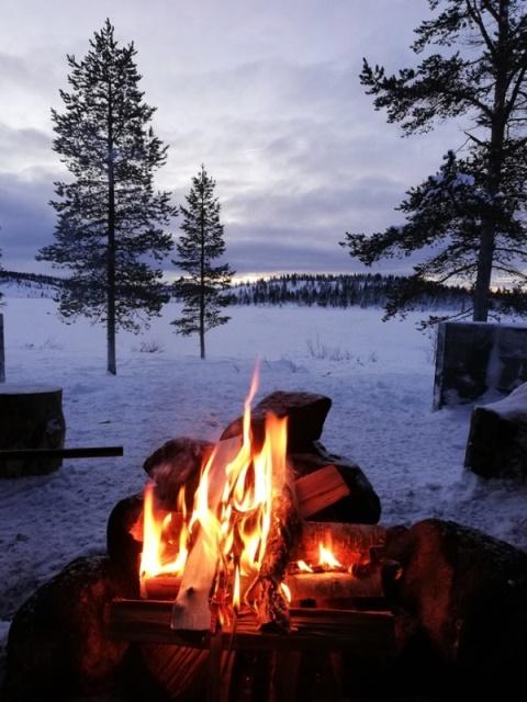Inarin eteläpuolella olevan Tuulisjärven maisemia tammikuussa 2019. Kuva: Tiina Vesterinen