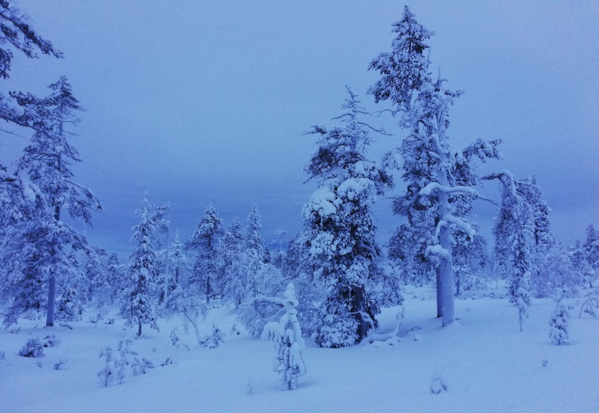 Photo: Tiina Vesterinen. Skiing in Ivalo