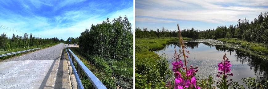 Our first overnight stop in Lapland was Kierinki Village in Sodankylä wilderness. The picture is from the road Rovaniemi - Kierinki. Photo: LikeFinland.com