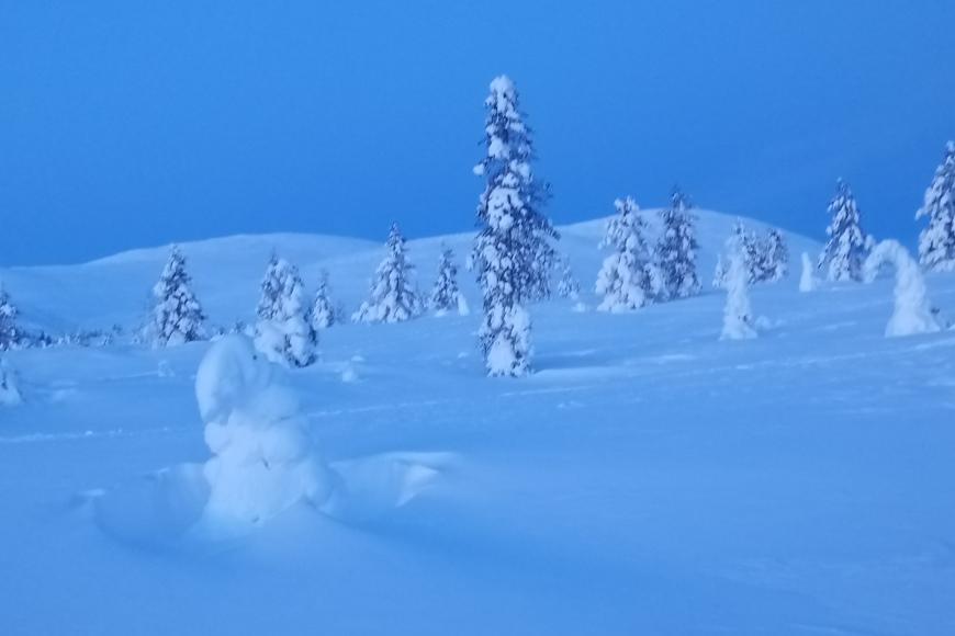 Pallaksen maisema rauhoittaa; voit kohdata kauniita värisävyjä alkuvuodesta. Kuva: Paula Pekonen